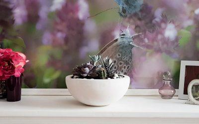 Erstelle deinen eigenen Sukkulenten Pflanzer