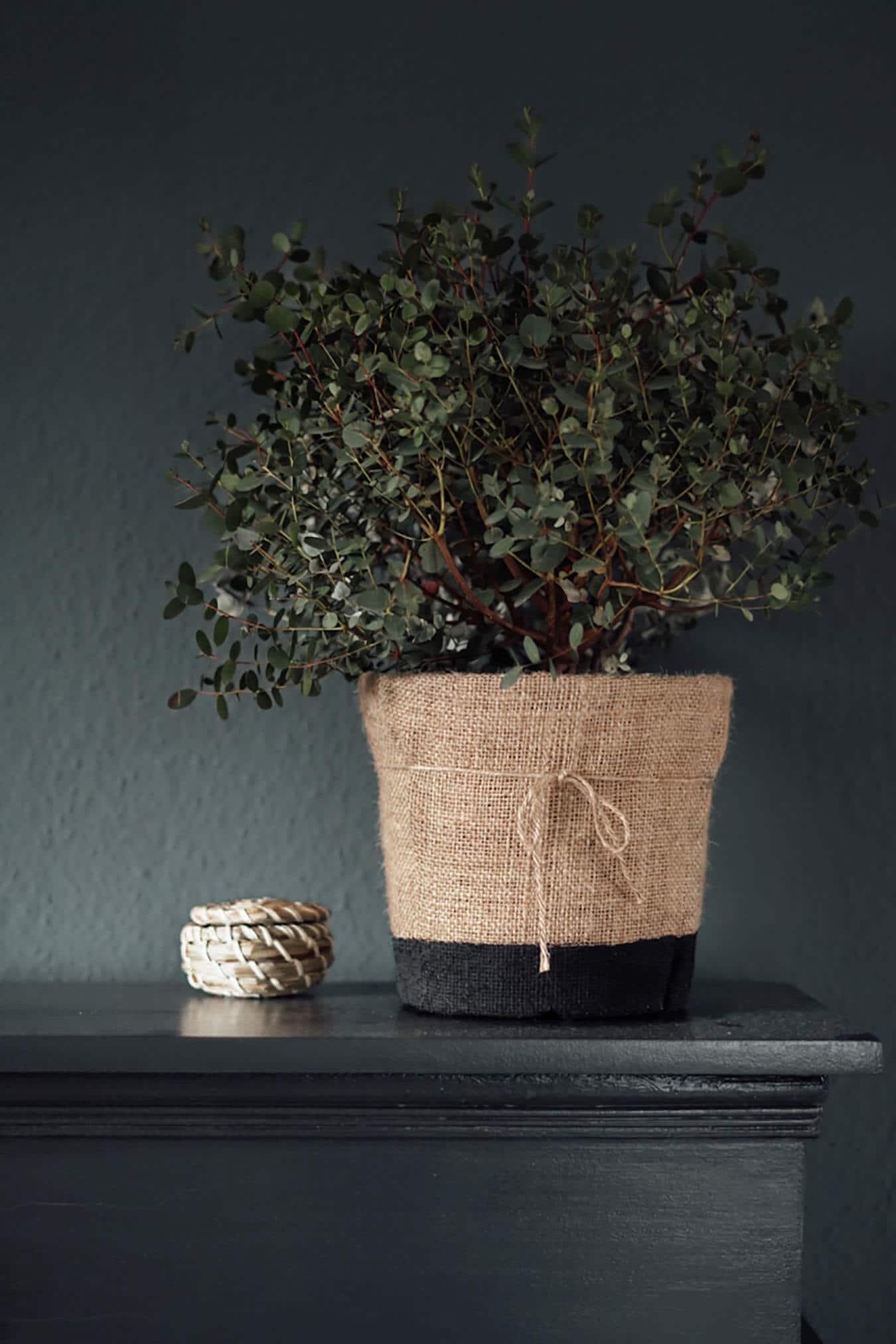 DIY Flower Pot   Createbeautifulthings